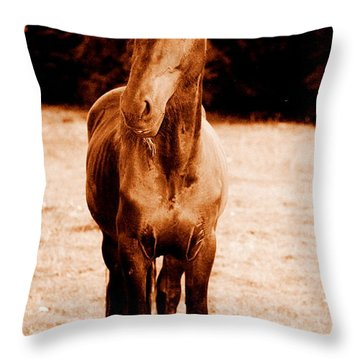 Whats Goin On Throw Pillow