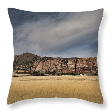 Throw Pillow featuring the photograph Wheatfield Zion National Park by Hugh Smith