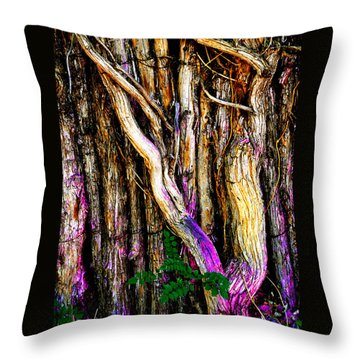 Throw Pillow featuring the photograph When Sound Is Color by Susanne Still