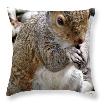 Throw Pillow featuring the photograph Where Are The Peanuts by Rory Sagner