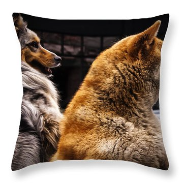 Where Is He? Throw Pillow by Sandra Selle Rodriguez