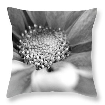 Where It All Begins Throw Pillow