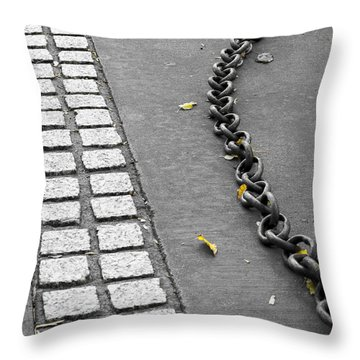 Throw Pillow featuring the photograph Where It Goes by Fran Riley