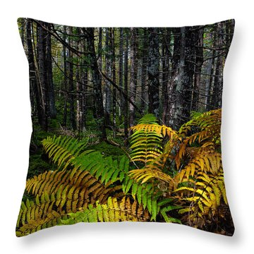 Where The Ferns Grow Throw Pillow