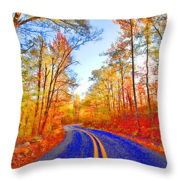 Where The Road Snakes Throw Pillow by Douglas Barnard