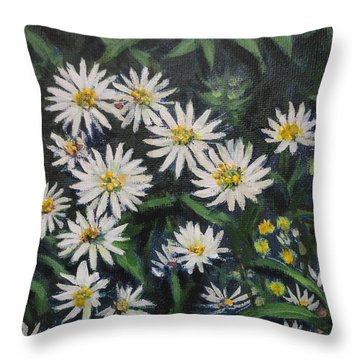 Whie Asters Throw Pillow by Usha Shantharam