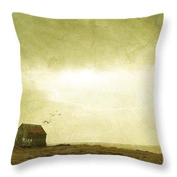 Whimsical Reykjavik Throw Pillow