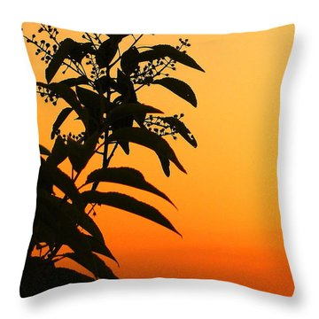 Whipple Hill Throw Pillow