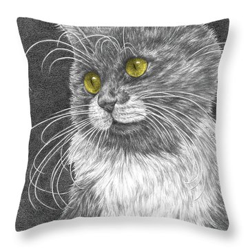 Whiskers - Color Tinted Art Print Throw Pillow by Kelli Swan