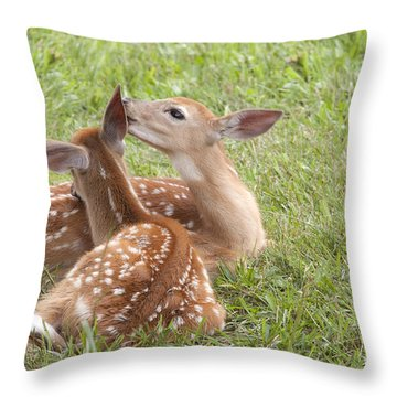 Throw Pillow featuring the photograph Whispering Fawns by Jeannette Hunt