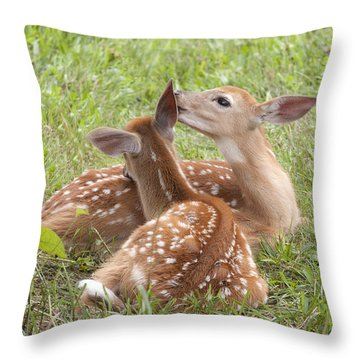 Whispering Fawns Throw Pillow