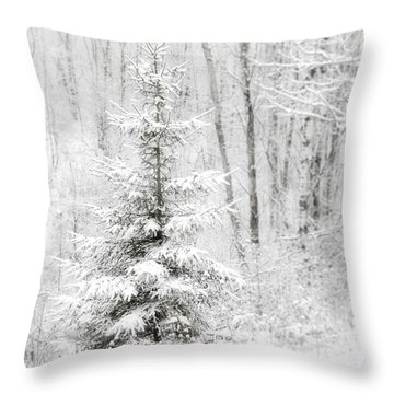 Whispers The Snow Throw Pillow