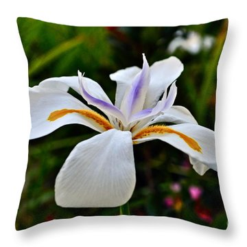 White African Iris Throw Pillow by Gwyn Newcombe