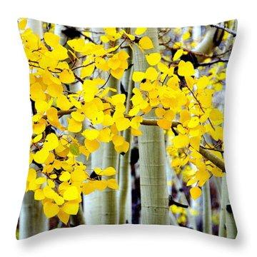 White Aspen Golden Leaves Throw Pillow by Jeff Lowe