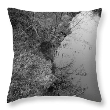White Branch Riverside  Throw Pillow by Kathleen Grace