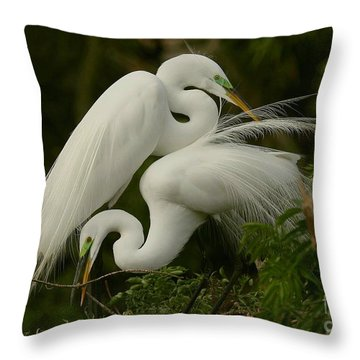White Egrets Working Together Throw Pillow by Myrna Bradshaw
