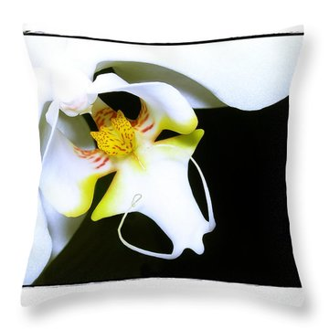 White Elegance Throw Pillow by Judi Bagwell