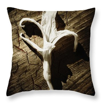 White Flower Throw Pillow by Skip Nall