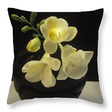 White Freesias In Black Vase Throw Pillow