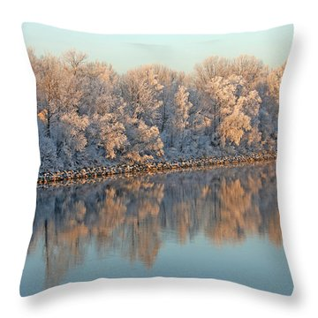 White Frost In Trees Throw Pillow by Ralf Kaiser