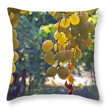 White Grapes Throw Pillow by Barbara McMahon