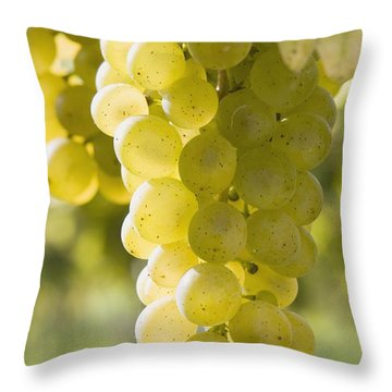White Grapes Throw Pillow by Michael Interisano