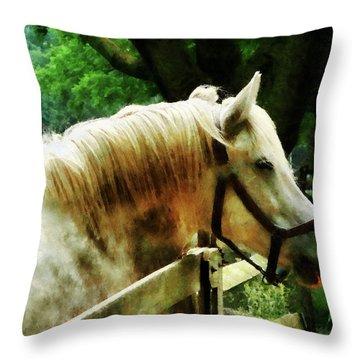 White Horse Closeup Throw Pillow by Susan Savad