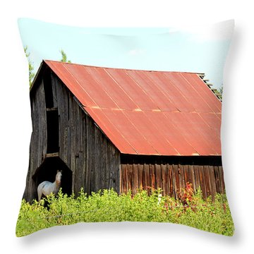 Throw Pillow featuring the photograph White Horse Waiting by Kathy  White
