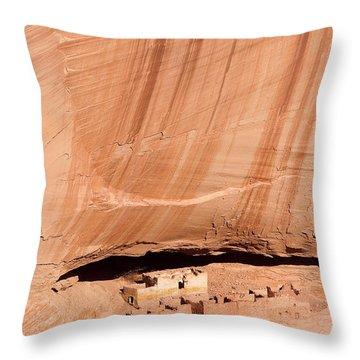 White House Ruins Throw Pillow by Mike  Dawson