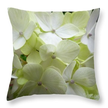Throw Pillow featuring the photograph White Hydrangea by Barbara Moignard