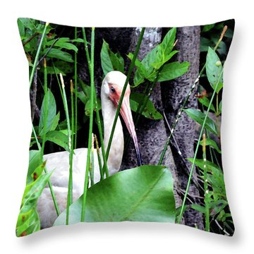 Throw Pillow featuring the photograph White Ibis At The Everglades by Pravine Chester