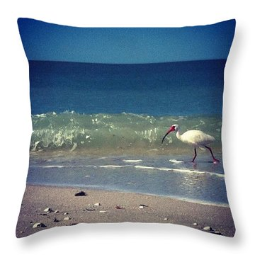 White Ibis  Throw Pillow