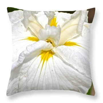 Throw Pillow featuring the photograph White Iris by Eve Spring