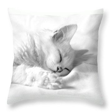 White Kitten On White. Throw Pillow