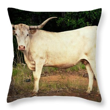 White Longhorn Throw Pillow by Tamyra Ayles