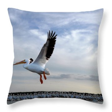 Throw Pillow featuring the photograph White Pelican Flying Over Island by Dan Friend