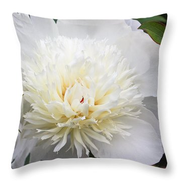 White Peony Throw Pillow by Ann Murphy