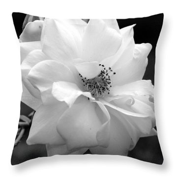 White Rose Throw Pillow by Michelle Joseph-Long