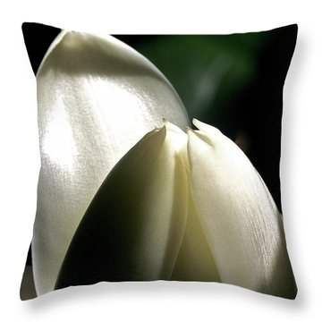 White Torch Ginger Throw Pillow