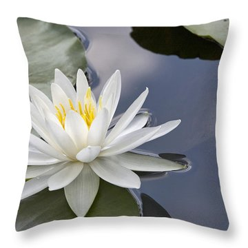 White Water Lily Throw Pillow by Vladimir Sidoropolev