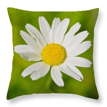 White Petals Yellow Center Throw Pillow