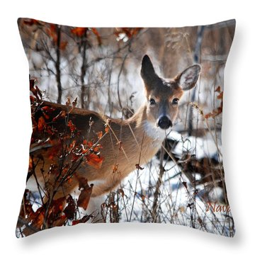 Throw Pillow featuring the photograph Whitetail Deer In Snow by Nava Thompson