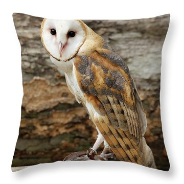 Whoooo Are You Throw Pillow