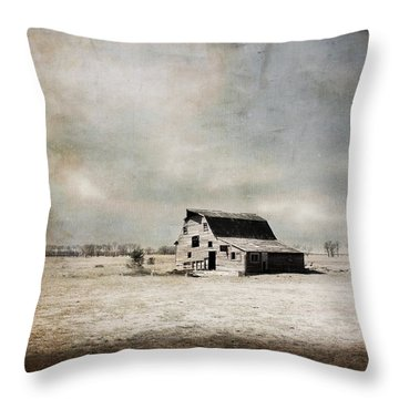Wide Open Spaces Throw Pillow by Julie Hamilton