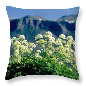 Wild Angelica Throw Pillow by James Steinberg and Photo Researchers