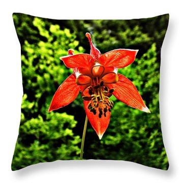 Throw Pillow featuring the photograph Wild Columbine Singlet by Nick Kloepping
