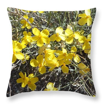 Throw Pillow featuring the photograph Wild Desert Flowers by Kume Bryant