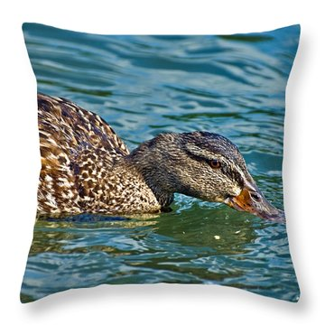 Wild Duck Throw Pillow by Susan Leggett