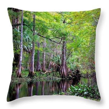 Wild Florida - Hillsborough River Throw Pillow