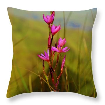 Throw Pillow featuring the photograph Wild Flower by Werner Lehmann